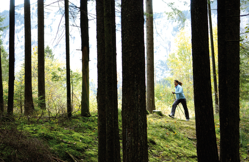 10. Nordic Walking & Fitness Event 2014