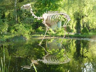 Biennale Skulpturen-Symposium - Ein Sommertagtraum
