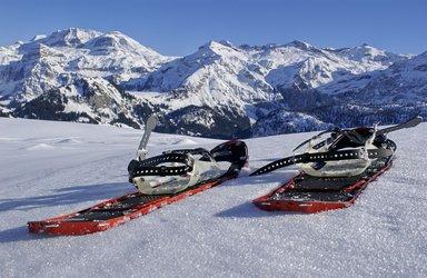 Schneeschuhwanderung Iffighorn, 2378m mittel-anspruchsvolle Genusstour